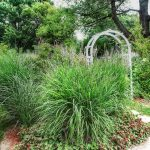 White arch and ornamental grass in the garden
