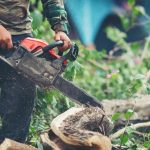 Best Professional Chainsaw: Top 7 Models to Purchase