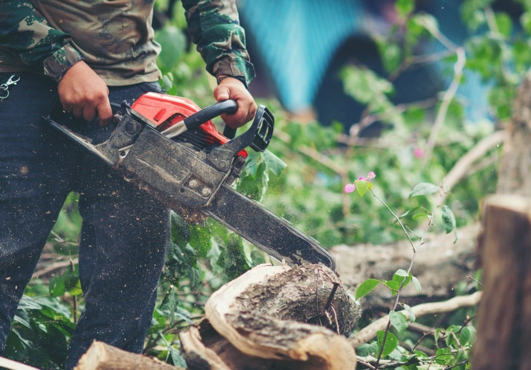 The Best Professional Chainsaw: Top 7 Models to Purchase in 2020
