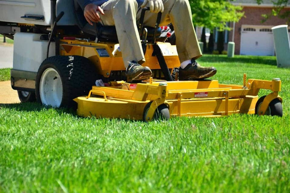 lawn care lawn services grass cutting