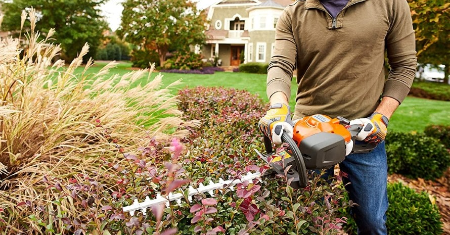man uses hedge trimmer