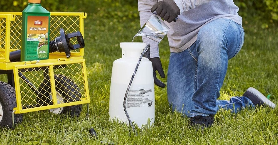 Ortho Weed B Gon Plus Crabgrass Control Concentrate2 featured image