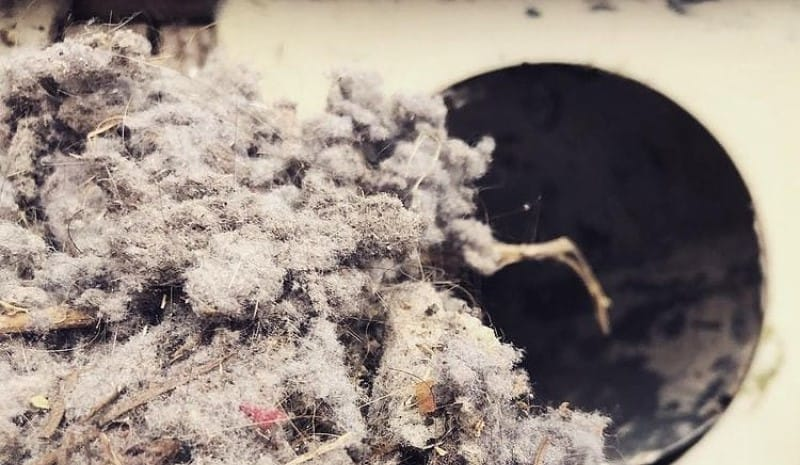 What is the lint in a dryer vent