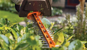 Best Cordless Hedge Trimmer in 2021: How to Choose the Ideal Tool for Your Needs