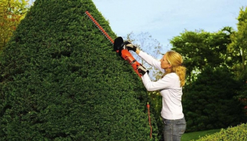 Best Corded Hedge Trimmer to Buy in 2021: Electric Hedge Trimmer Reviews