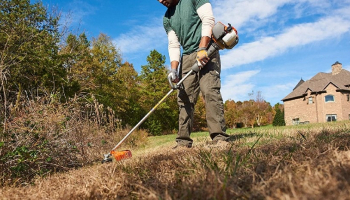 Best Cordless String Trimmer: Top Picks & Definitive Buyer's Guide