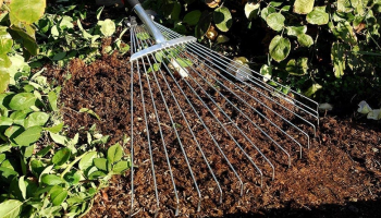 Best Leaf Rake in 2021 for Quality Garden Cleaning