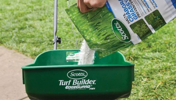 Best Weed Killer for Lawns: Make Your Lawn Superior