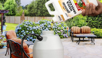 Best Weed Killer for Flower Beds: Get Rid of Weeds for Good