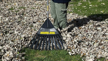 Best Rake for Grass in 2021: Find Your Efficient Assistant