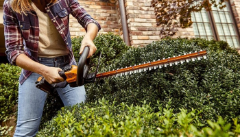 Best Battery Powered Hedge Trimmer of 2021: Make Cutting Easy and Pleasant