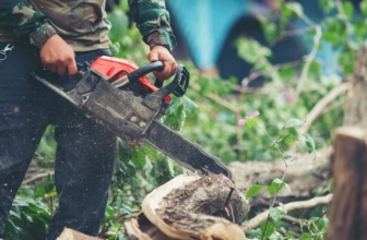 The Best Professional Chainsaw: Top 7 Models to Purchase