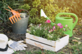 How to Start a Flower Garden: Find out the Easiest Methods (Updated in 2020)