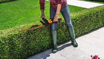 Best Electric Hedge Trimmer for Your Garden in 2021